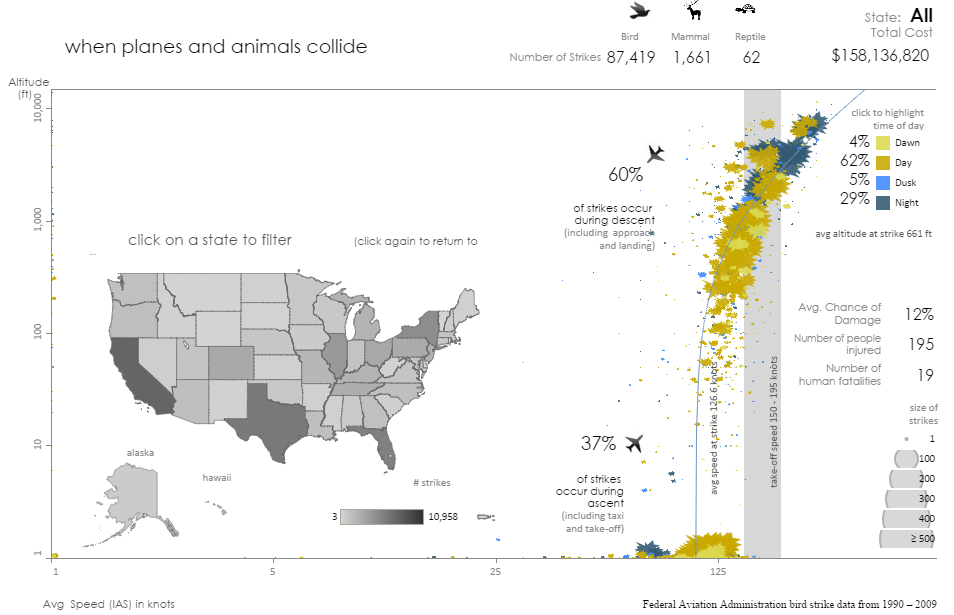 visualization of the amount of collisions between aircraft and birds, mammals and reptiles