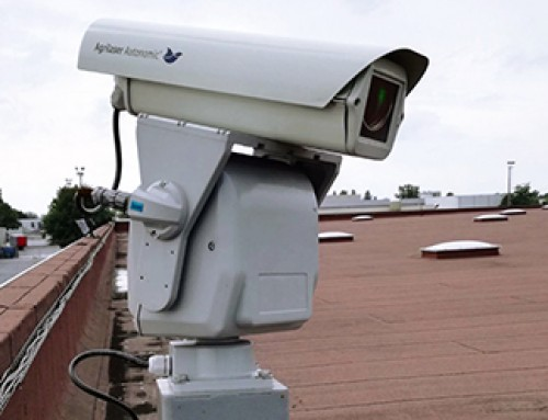 Automated bird deterrent lasers dispersing gulls from Carrefour rooftops