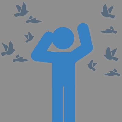 Effectief vogeloverlast voorkomen
