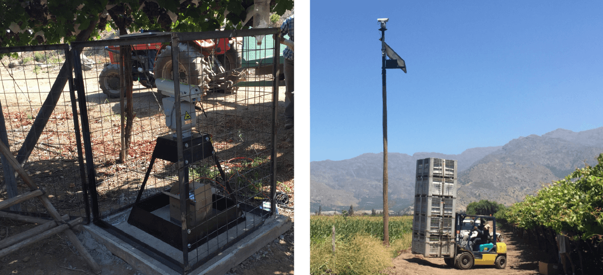 Autonomic láser reduce daño del pájaros