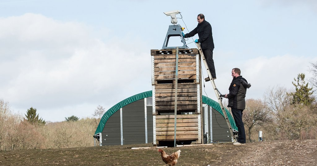 Bird Deterrent Laser Saves Chickens From Avian Influenza
