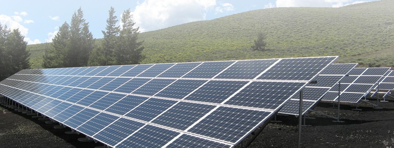 Effective Bird Repellent For Solar Panels