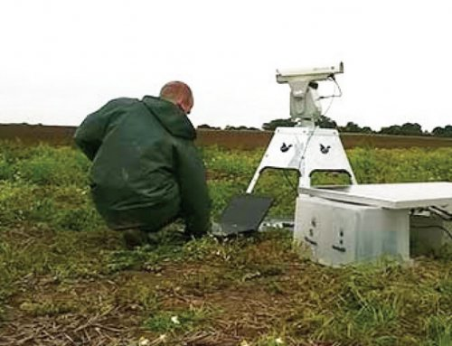 British crop testing facility has reduced bird presence by 90% with the automated laser bird repellent
