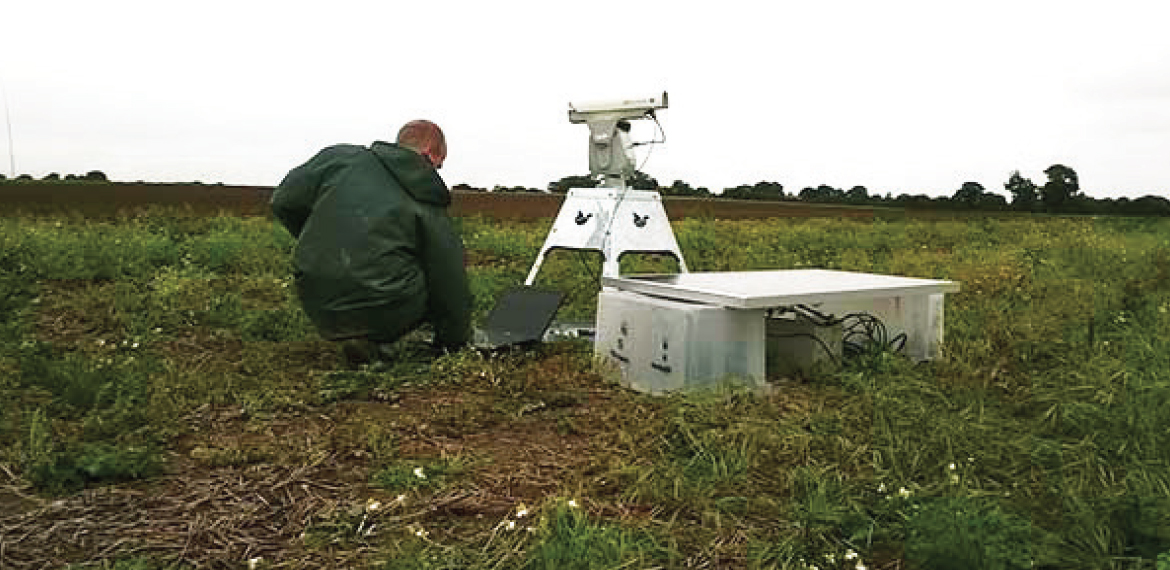 Stockbridge technology centre tests bird repellent