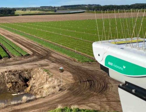 Australian horticulture grower reduces bird presence by up to 90%